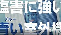 EDION BLUE FIN-ブルーフィン-CM